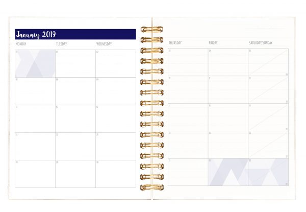 boldly go productivity planner, boldly + co, organization